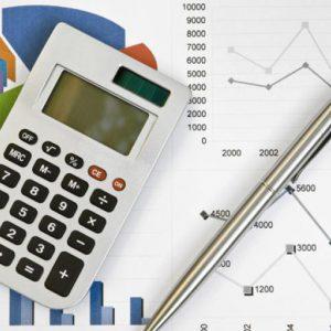 6597_gestion_presupuestaria-866-487