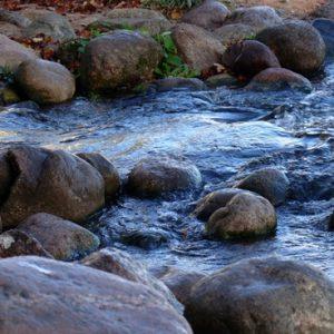 water_stone_stream_230816